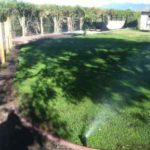 New Irrgiation System and Sod